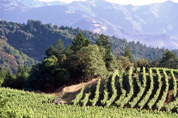 The family owned and operated Pride Mountain Vineyards in California