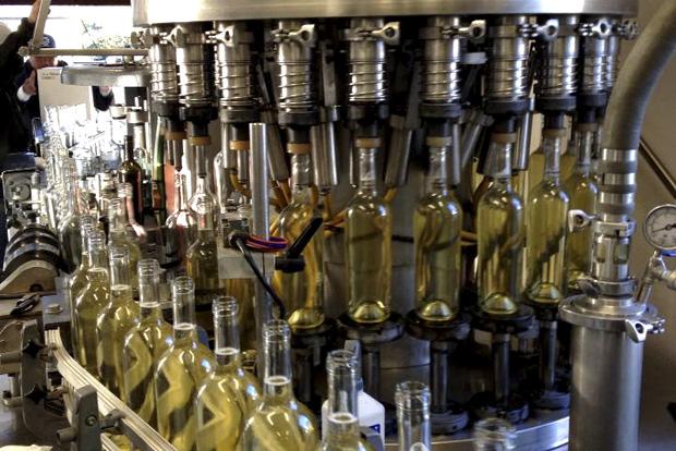 Bottling Estate Sauvignon Blanc at the Salvestrin Winery